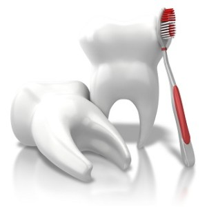 dentist port richey