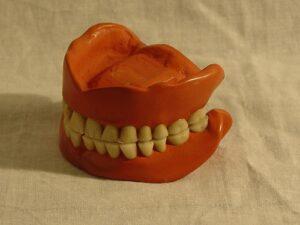 Dentist Zephyrhills